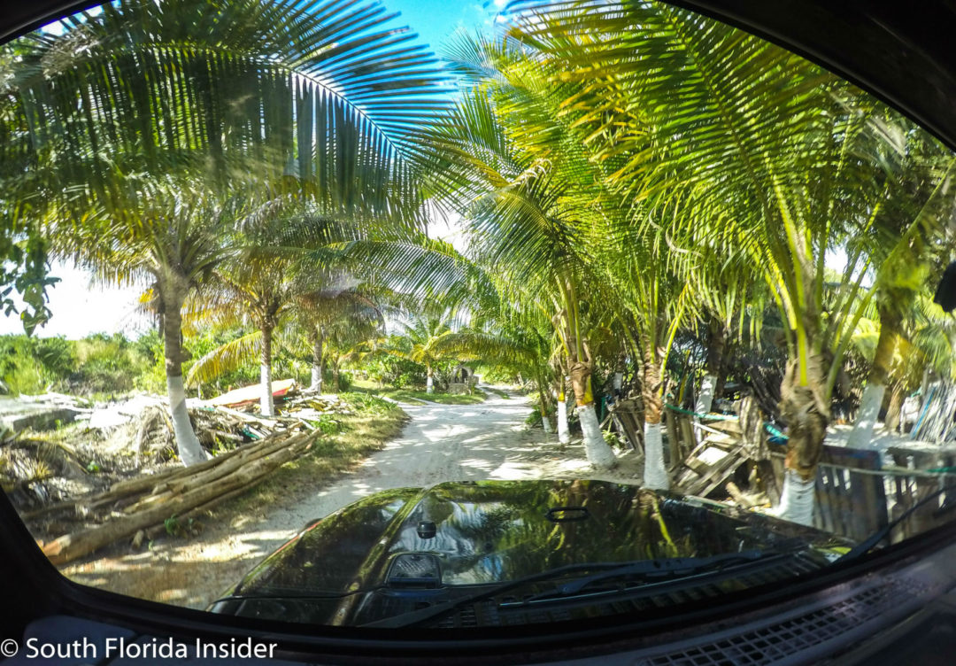 See The Authentic Side of Cozumel · South Florida InsiderSouth ...